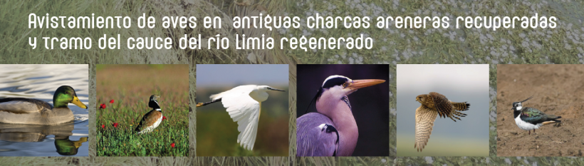 The CHMS and the DX of Natural Heritage organise a Day Ornitológica in the basin of the Limia